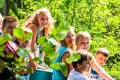 Summer Camp Heino - Natur